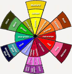 Color wheel showing tints and shades of different colors